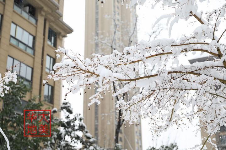 大美华地 | 冬遇